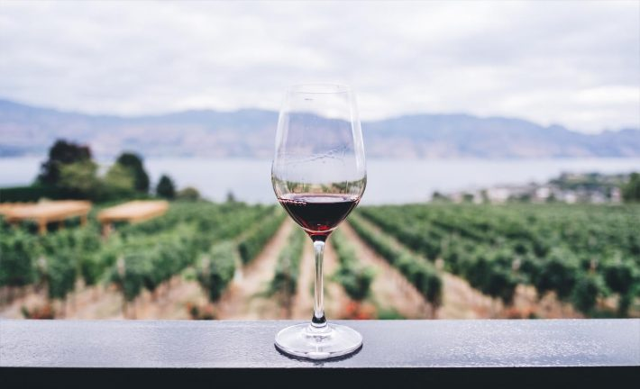 Máster en Viticultura, Enología y Gestión de Empresas Vitivinícolas